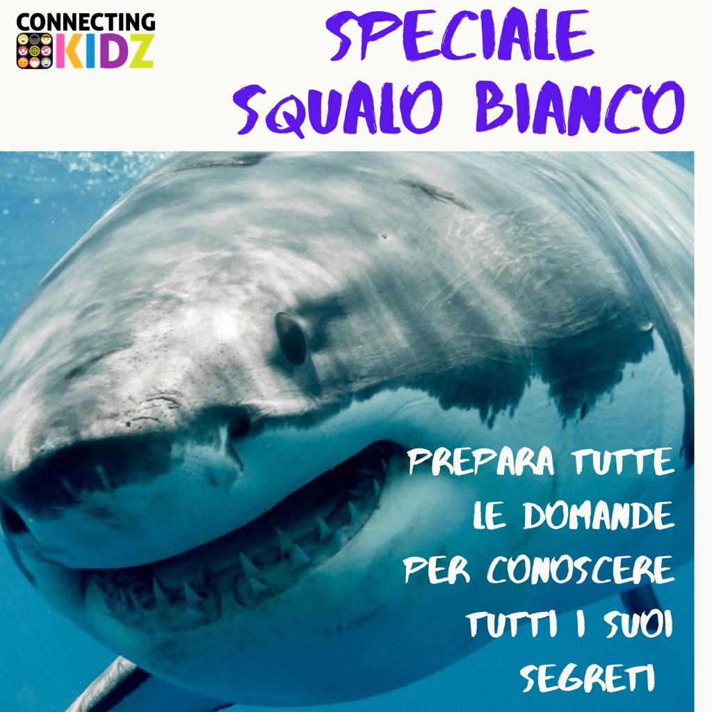 Faccia a Faccia con gli squali - SPECIALE Squalo Bianco