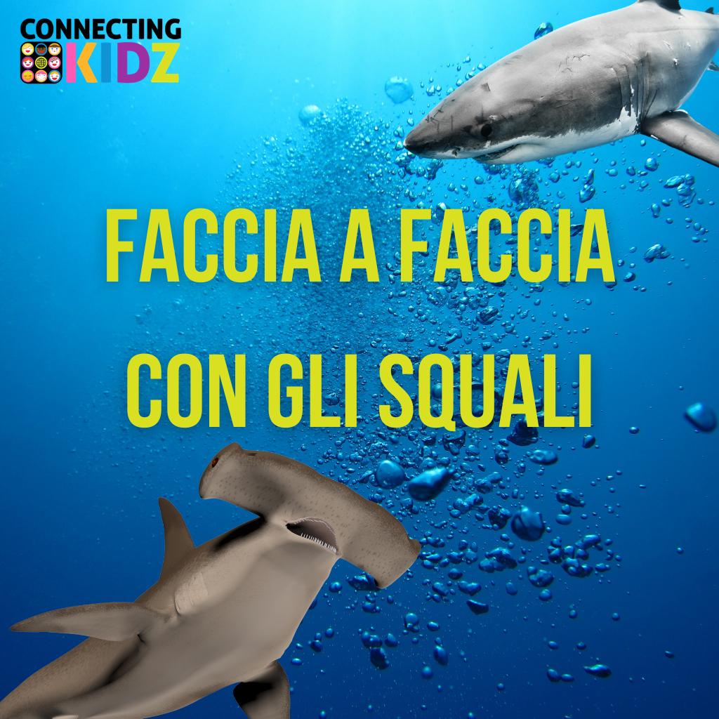 Faccia a Faccia con gli squali - nuotiamo con lo squalo chitarra e con lo squalo leopardo